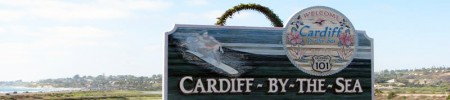 Cardiff-by-the-Sea House Cleaning Services